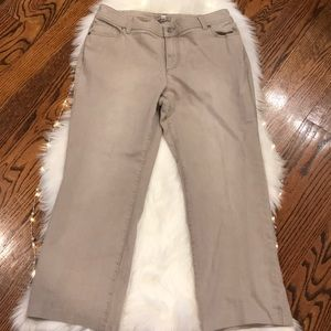 Chico's Stretch Jeans (Short)